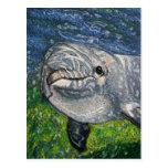 Dolphin Swimming Under Water: Dappled Sunlight