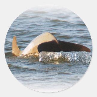 Dolphin Tail Round Sticker