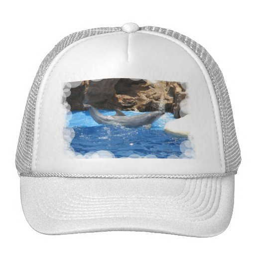 Dolphin Tricks Baseball Hat