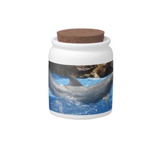 Dolphin Tricks Candy Jar
