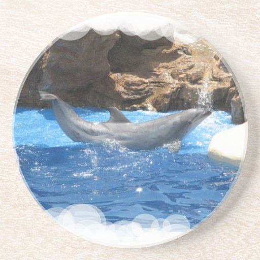 Dolphin Tricks Coasters