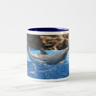 Dolphin Tricks Coffee Cup