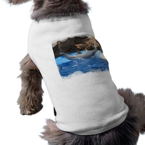 Dolphin Tricks Dog Shirt