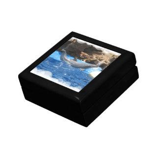 Dolphin Tricks  Gift Box