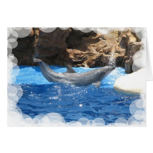 Dolphin Tricks Greeting Card