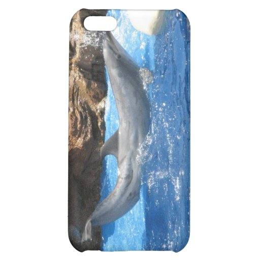 Dolphin Tricks iPhone Case Case For iPhone 5C
