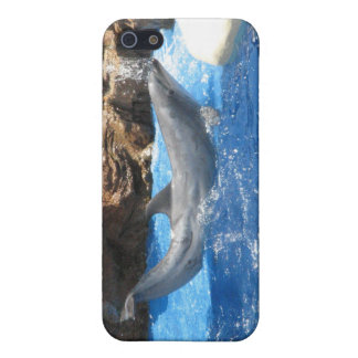 Dolphin Tricks iPhone Case iPhone 5/5S Cover