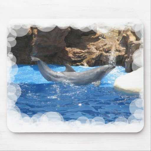 Dolphin Tricks Mouse Pad