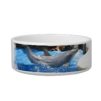 Dolphin Tricks Pet Bowl Cat Food Bowls