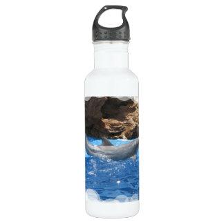 Dolphin Tricks 710 Ml Water Bottle