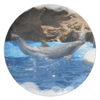 Dolphin Tricks  Plate