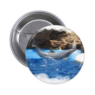 Dolphin Tricks Round Pin