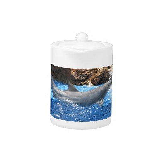 Dolphin Tricks Teapot