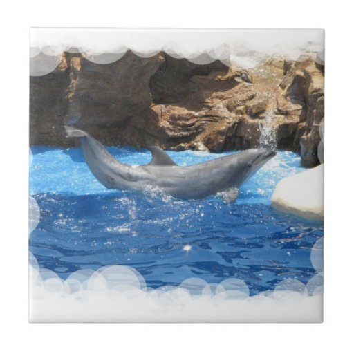 Dolphin Tricks  Tile