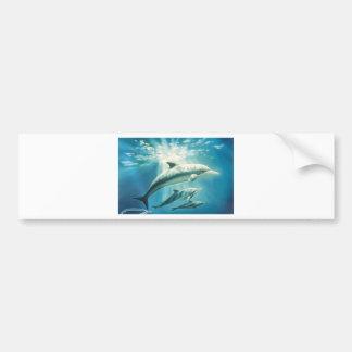 Dolphin Trio Bumper Sticker