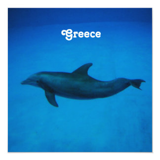 Dolphins 13 Cm X 13 Cm Square Invitation Card