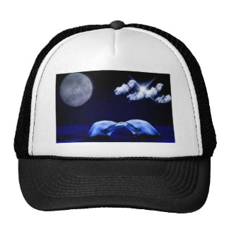 Dolphins and Moon Cap
