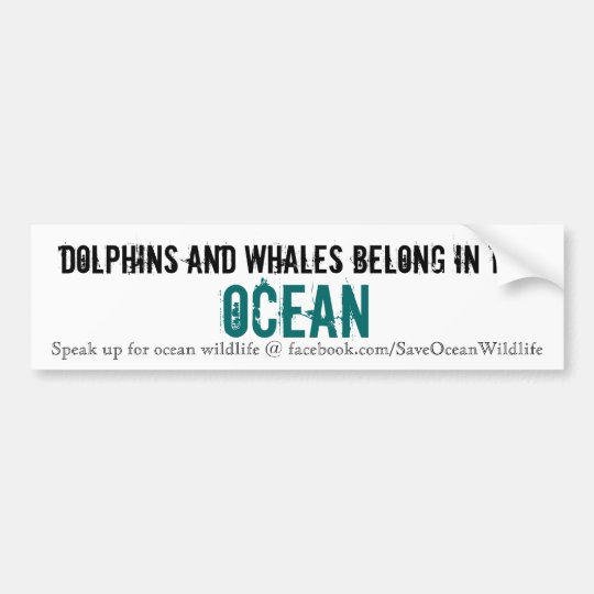 Dolphins and Whales Belong in the Ocean Bumper