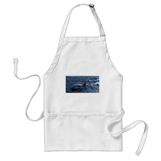 Dolphins at the boatside standard apron