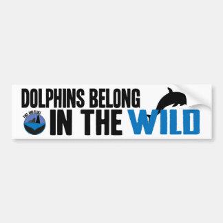 Dolphins Belong in the Wild Bumper Sticker