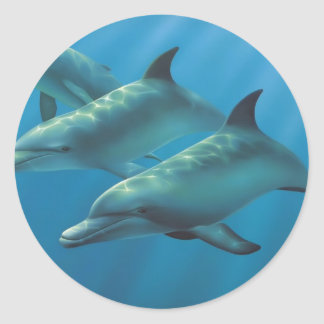 Dolphins by Andrew Patsalou Round Sticker