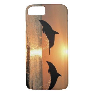 Dolphins by Sunset iPhone 8/7 Case