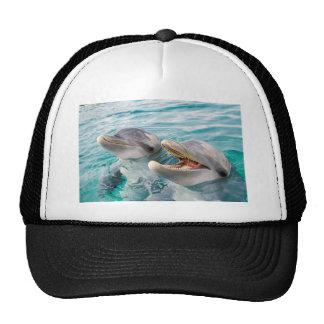 Dolphins Cap