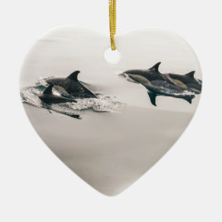 Dolphins Christmas Ornament