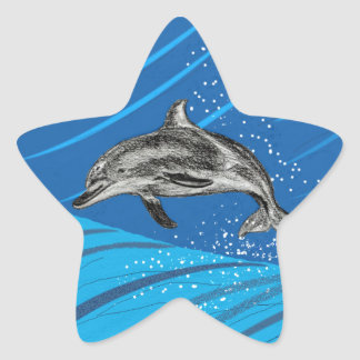 dolphins-color star sticker