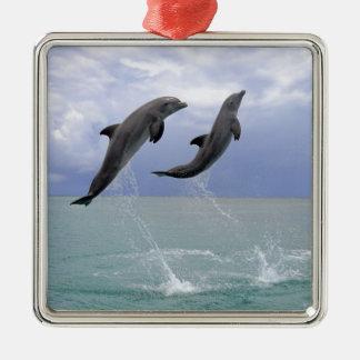 Dolphins | Delfin (Grosser Tuemmler) Christmas Ornament
