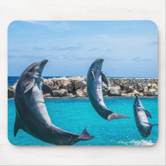 Dolphins doing tricks mouse pad