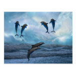 Dolphins fantasy postcard