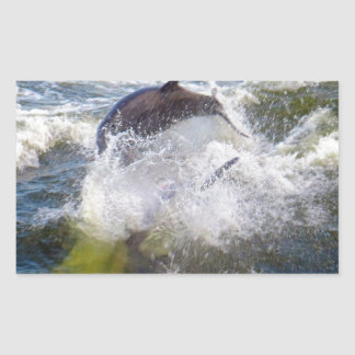 Dolphins Followings Boat Rectangular Sticker