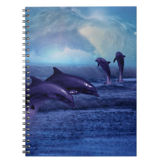 Dolphins fun and play notebooks