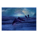 Dolphins fun and play poster