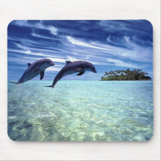 Dolphins Galore Mouse Mat