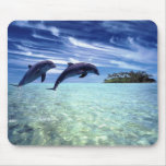 Dolphins Galore Mouse Pads