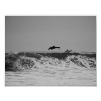 Dolphins jumping in waves poster