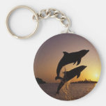 Dolphins Key Chains