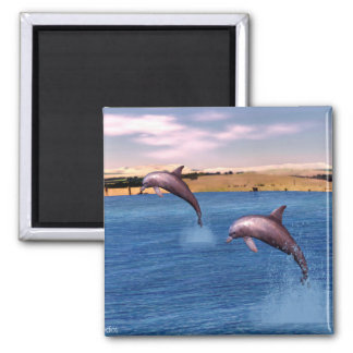 Dolphins Magnet