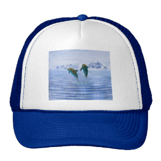 Dolphins make ripples cap