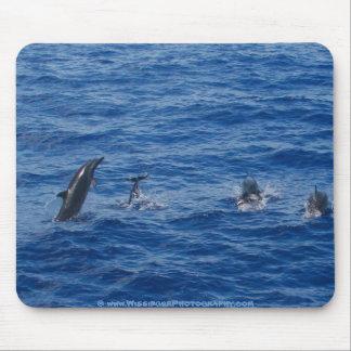 Dolphins ~ Northwest coast of Lanai Mouse Mat