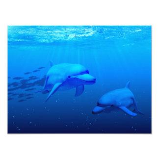 Dolphins Photo Print