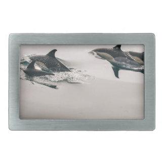 Dolphins Rectangular Belt Buckle