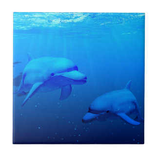 Dolphins Small Square Tile