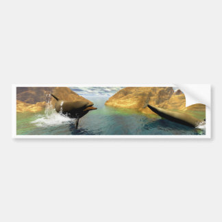 Dolphins swimming bumper sticker