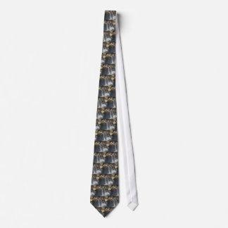 Dolphins Tie