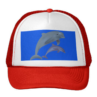 Dolphin's Trucker's Hat