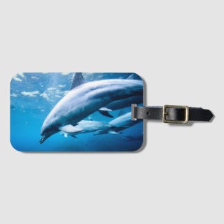 Dolphins Underwater Luggage Tag