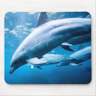 Dolphins Underwater Mouse Mat